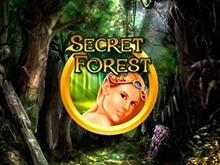 Автоматы Адмирал Secret Forest
