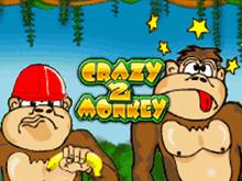 Автомат Адмирал Crazy Monkey 2